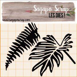 co6-feuilles-palmier-1-510x510